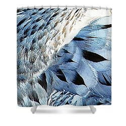 Blue Limpkin Shower Curtain