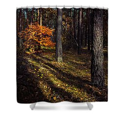 Shower Curtain featuring the photograph Orange Alien by Dmytro Korol