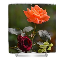 Orange And Black Rose Shower Curtain
