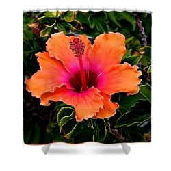 Orange And Pink Hibiscus 2 Shower Curtain