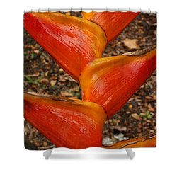 Orange And Red Haleconia Shower Curtain