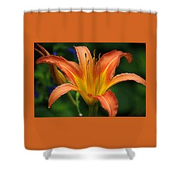 Orange And Yellow Daylily In Watercolor Shower Curtain