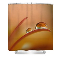Orange Arc Trio Shower Curtain