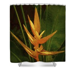 Orange Art Shower Curtain
