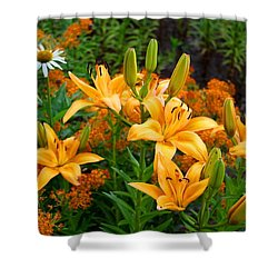 Shower Curtain featuring the photograph Orange Asiatic Lilies And Butterfly Weed by Kathryn Meyer