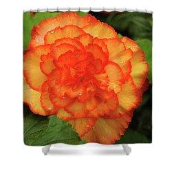 Orange Begonia Shower Curtain