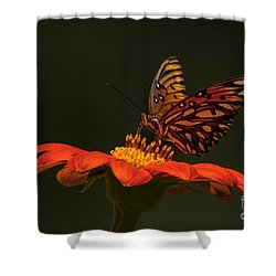 Orange Bliss Shower Curtain
