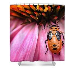 Orange Bug On Pink Flower Macro 1 Shower Curtain