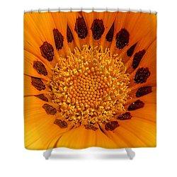 Orange Burst - Daisy Shower Curtain