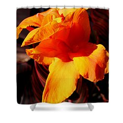 Orange Canna II Shower Curtain by M Diane Bonaparte
