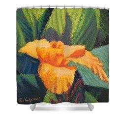 Orange Cannas Shower Curtain
