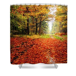 Shower Curtain featuring the photograph Orange Carpet by Dmytro Korol