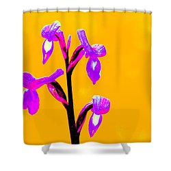 Orange Champagne Orchid Shower Curtain by Richard Patmore