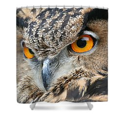 Shower Curtain featuring the photograph Orange Crush by Laddie Halupa