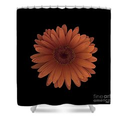 Orange Daisy Front Shower Curtain