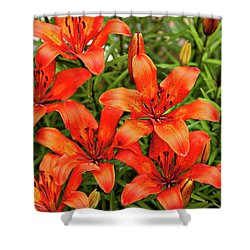 Shower Curtain featuring the photograph Orange Day Lillies by Mary Jo Allen