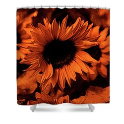 Orange  Shower Curtain by Dennis Baswell