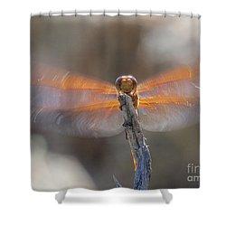 Dragonfly 4 Shower Curtain