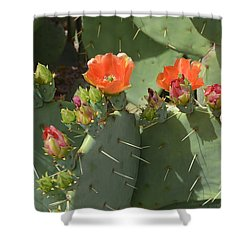 Orange Dream Cactus Shower Curtain