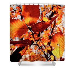 Orange Fall Leaves Shower Curtain