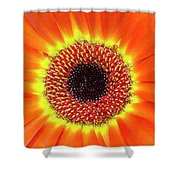 Orange Flower Macro Shower Curtain