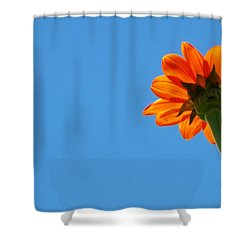 Orange Flower On Blue Sky Shower Curtain