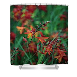 Orange Flowers 8 Shower Curtain