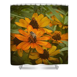 Orange Flowers And Bee Shower Curtain