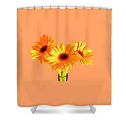 Orange Gerbera's Shower Curtain