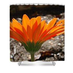 Orange Glory Shower Curtain