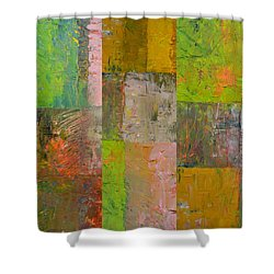 Shower Curtain featuring the painting Orange Green And Grey by Michelle Calkins