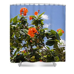 Orange Hibiscus With Fruit On The Indian River In Florida Shower Curtain by Allan  Hughes