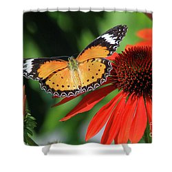 Orange Lacewing Shower Curtain