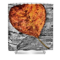 Orange Leaf Shower Curtain