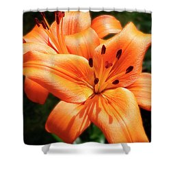 Orange Lily Joy Shower Curtain