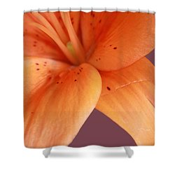 Shower Curtain featuring the photograph Orange Orchid by Karen Nicholson