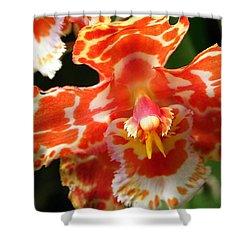 Orange Orchid Shower Curtain