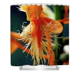Shower Curtain featuring the photograph Fringed Orange Orchid by Meta Gatschenberger