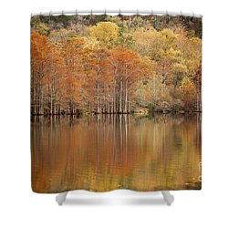 Orange Pool Shower Curtain