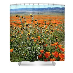 Shower Curtain featuring the mixed media Orange Poppies And Fiddleneck- Art By Linda Woods by Linda Woods