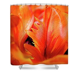 Orange Princess Tulip Natures Abstract Shower Curtain by Julie Palencia