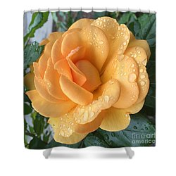 Orange Rain Drops Shower Curtain