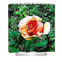 Shower Curtain featuring the photograph Orange Rose by Sadie Reneau