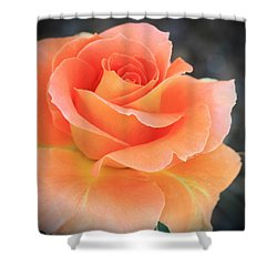 Orange Sherbert Shower Curtain by Marna Edwards Flavell