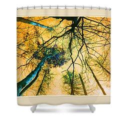 Shower Curtain featuring the photograph Orange Sky Tree Tops by Felipe Adan Lerma