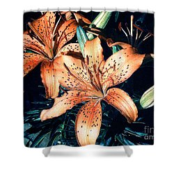Shower Curtain featuring the photograph Orange Spotted Lilies by Merton Allen