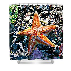 Orange Starfish Shower Curtain