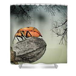 Orange Stink Bug 001 Shower Curtain