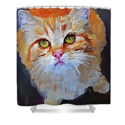 Orange Tabby Cat - Square Shower Curtain by Jai Johnson