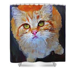 Orange Tabby Cat Shower Curtain by Jai Johnson